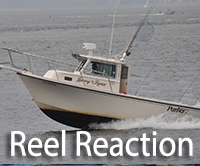 Reel reaction