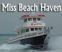 Miss beach Haven
